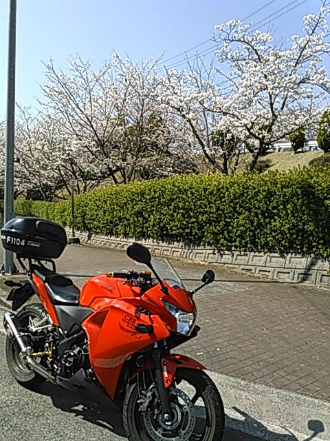KIMG0092.jpg